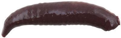 Berkley Gulp umělé nástrahy Pinched Crawler 2,5 cm - 3
